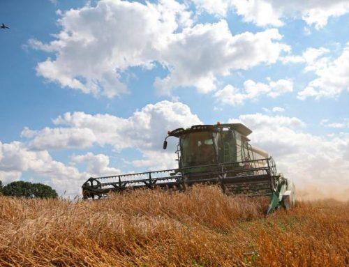 $227 billones del Plan de Desarrollo van para el agro: Minagricultura