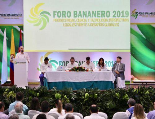 Foro Bananero en Santa Marta plantea retos globales para el sector