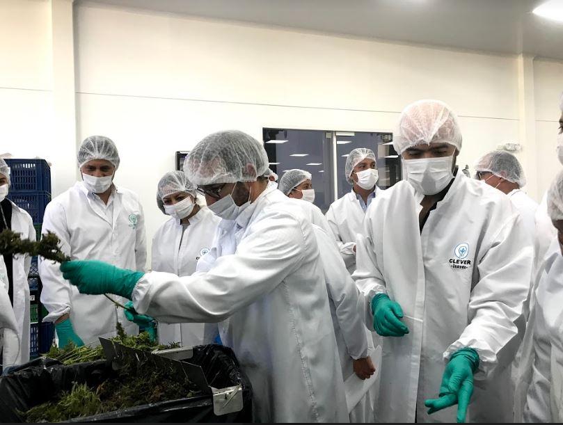 Con #NuestrosAfiliados: Clever Leaves recibe al Gobierno Nacional en sus cultivos de producción de cannabis medicinal