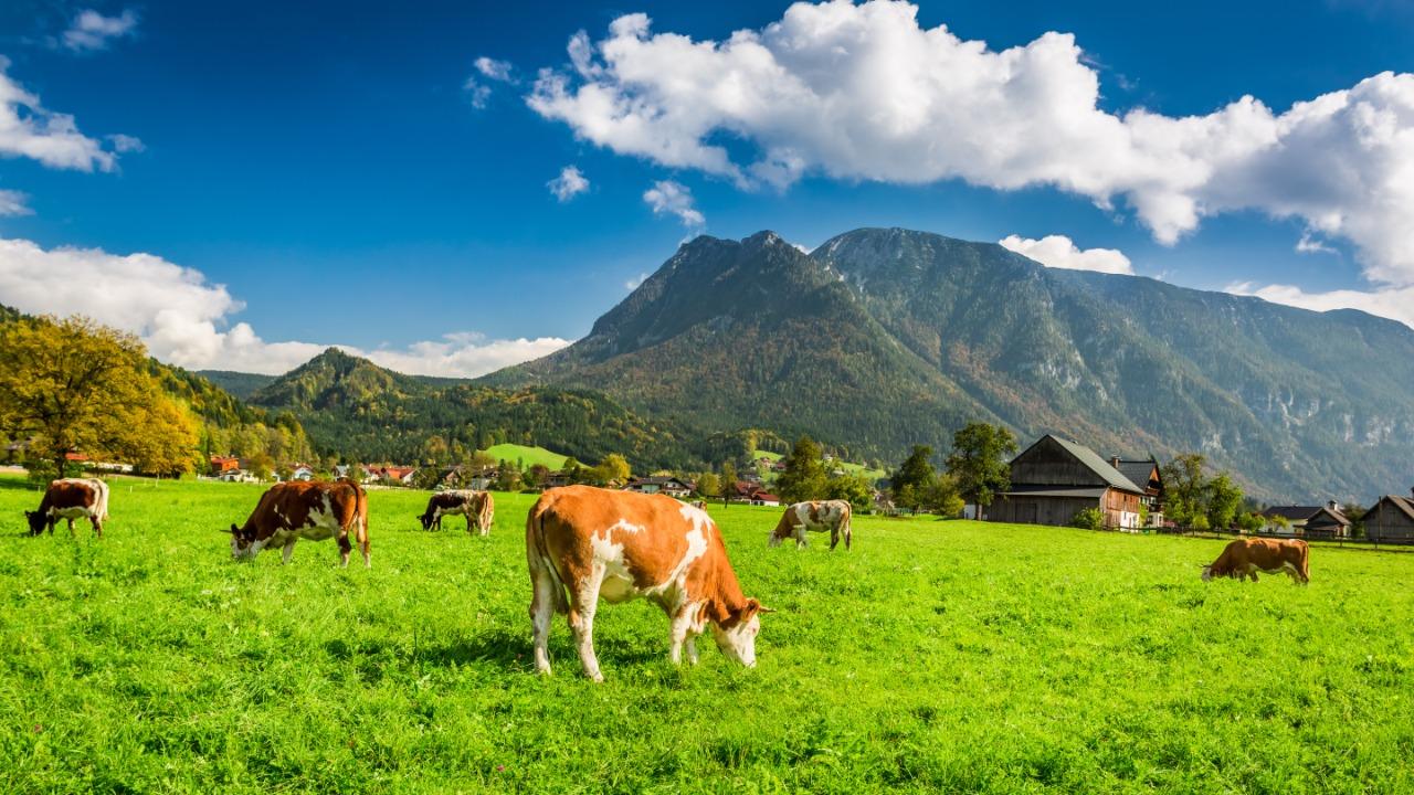 El agro se inquieta por aumento de importaciones de varios alimentos