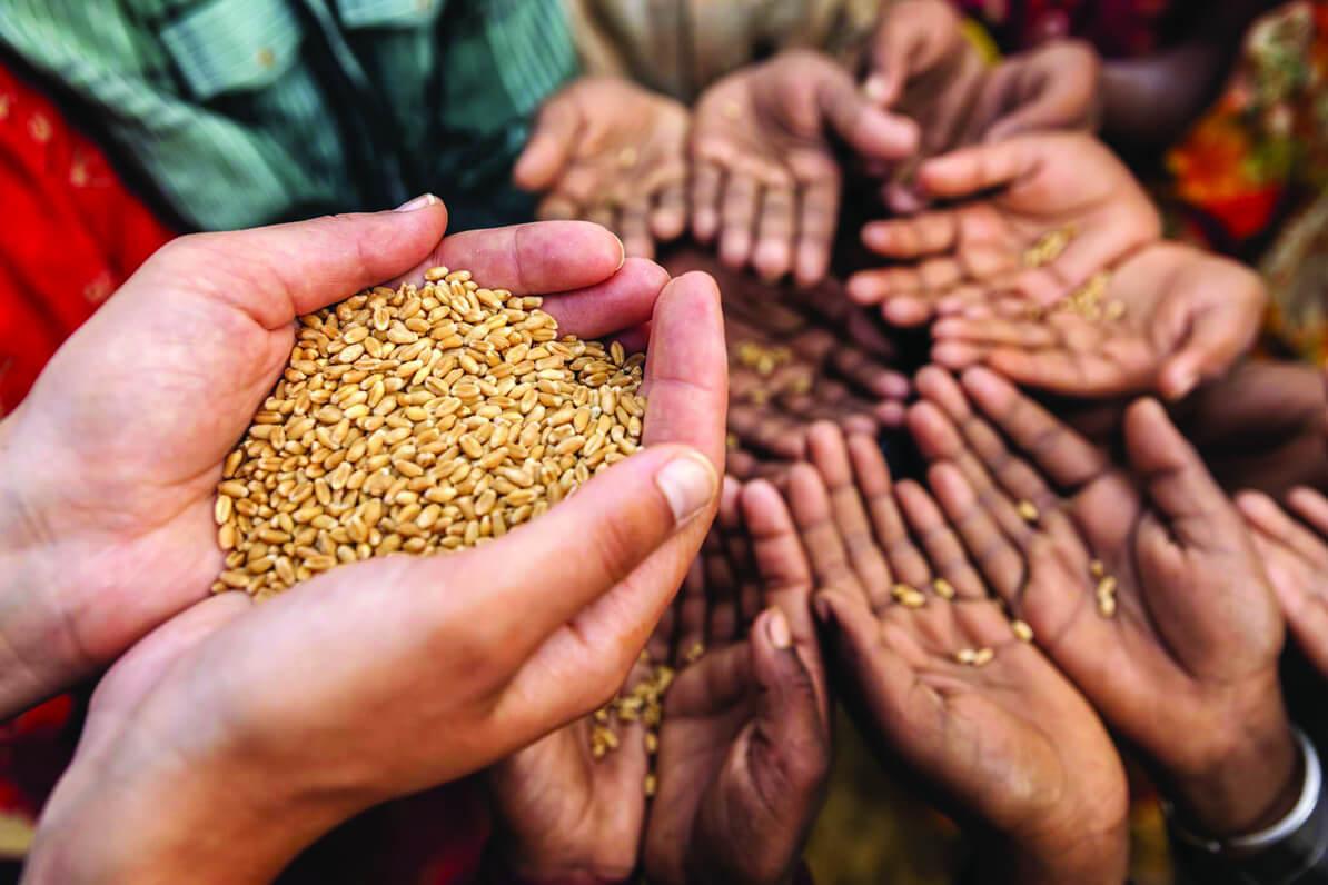 Agricultores urgen recursos para amparar cosechas ante eventualidades climáticas