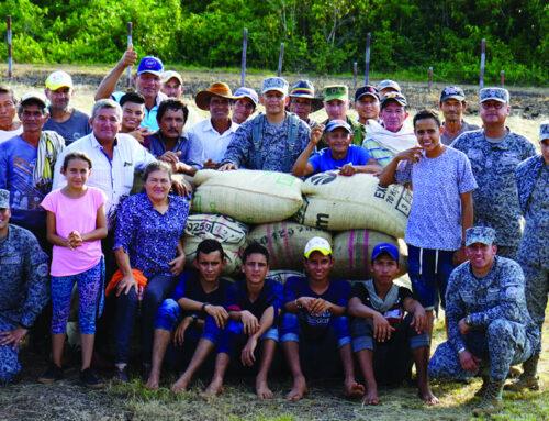 Sustitución de cultivos en la Paz con Legalidad. En la selva profunda del Vichada Guérima renace