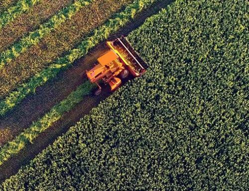 Identificadas las necesidades de información del agro
